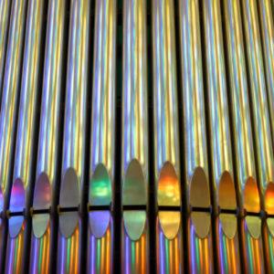 Reflet & orgue – LES PETITS CARRÉS